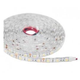 Ruban LED 12V 9,6W/m (Blanc Chaud/Blanc Froid)